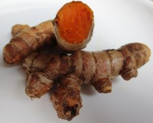Fresh Turmeric rhizome